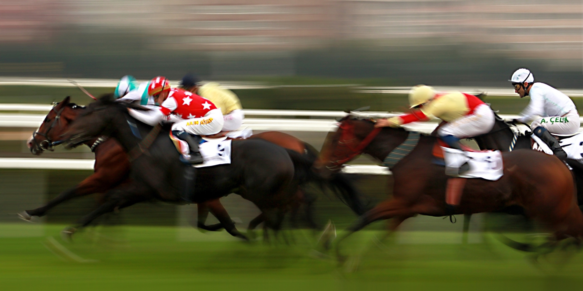 Horse Racing Tuncurry Forster